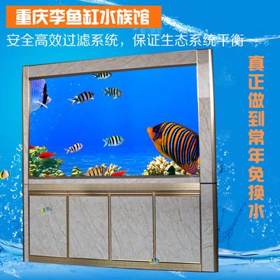 上过滤生态鱼