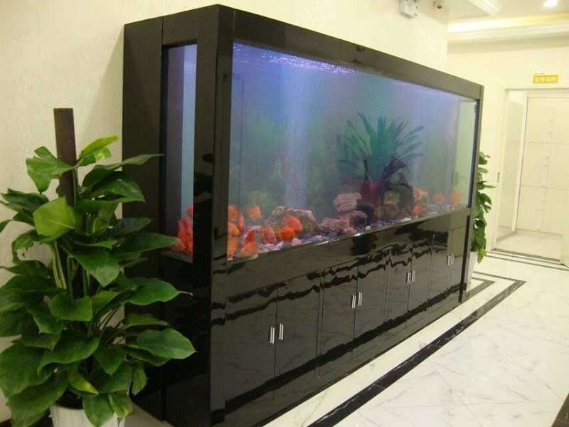 大型家用鱼缸